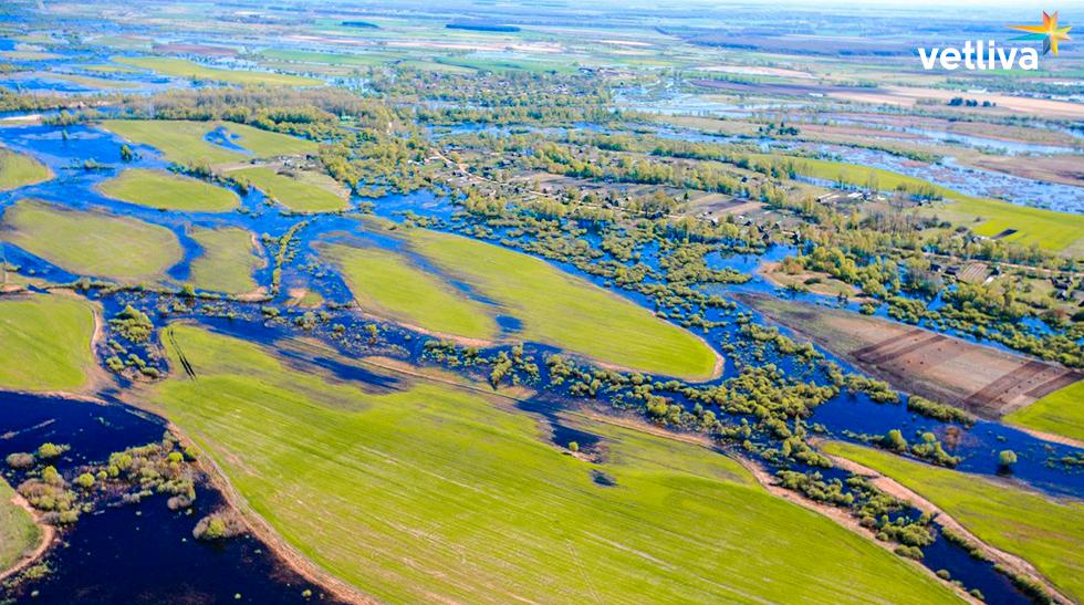 Национальный парк «Припятский» в Беларуси